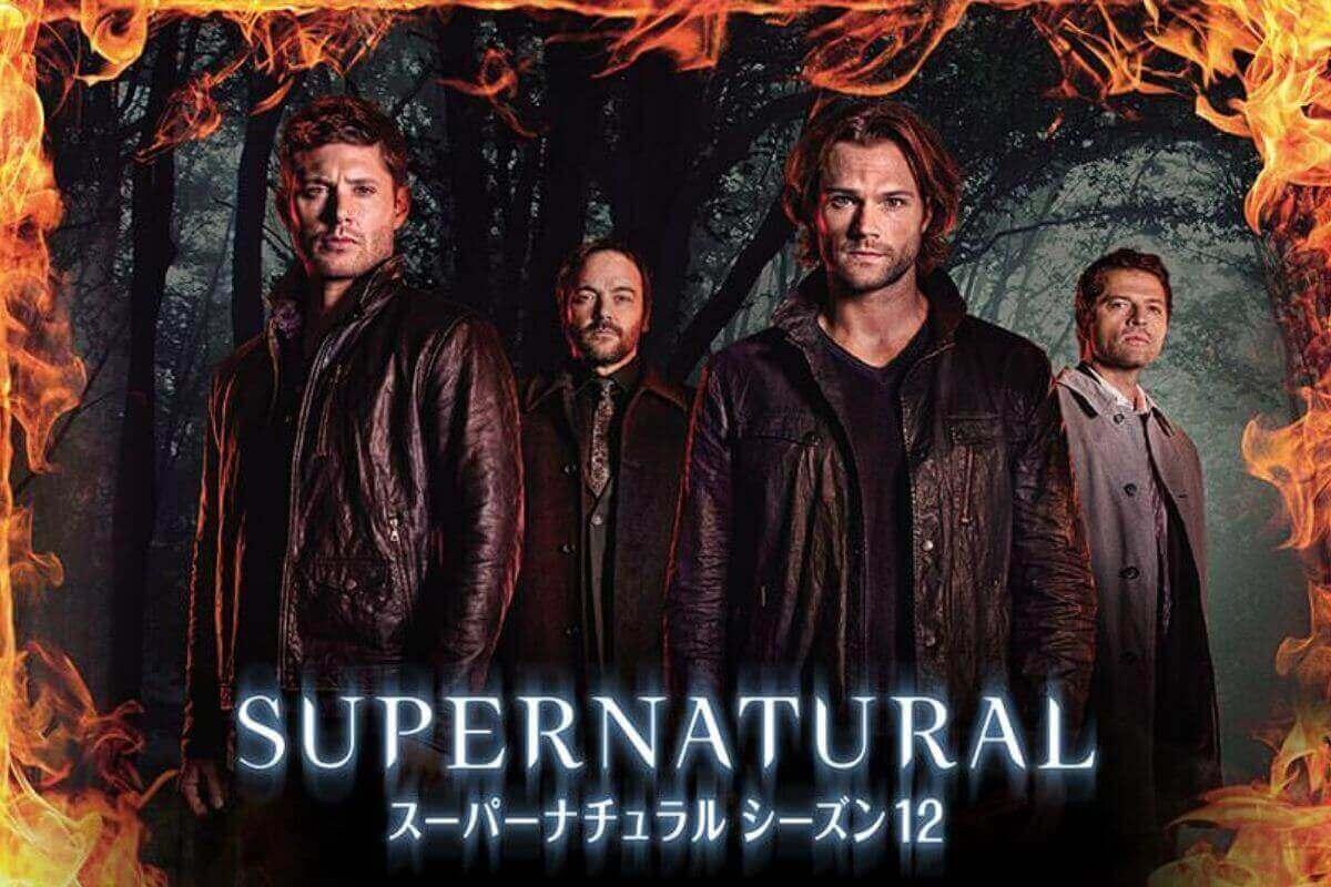 スーパーナチュラル12